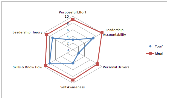 spider-web graph leadership factors