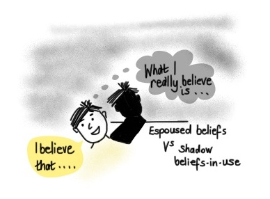 shadow beliefs